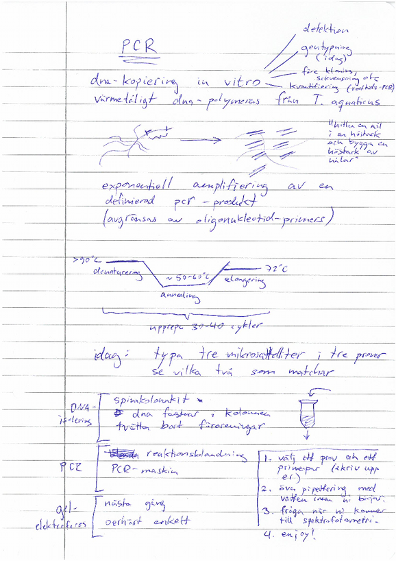 pcr_notes